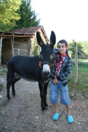 Susie the donkey at our Dordogne gites