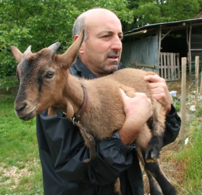holiday cottages in france with animals