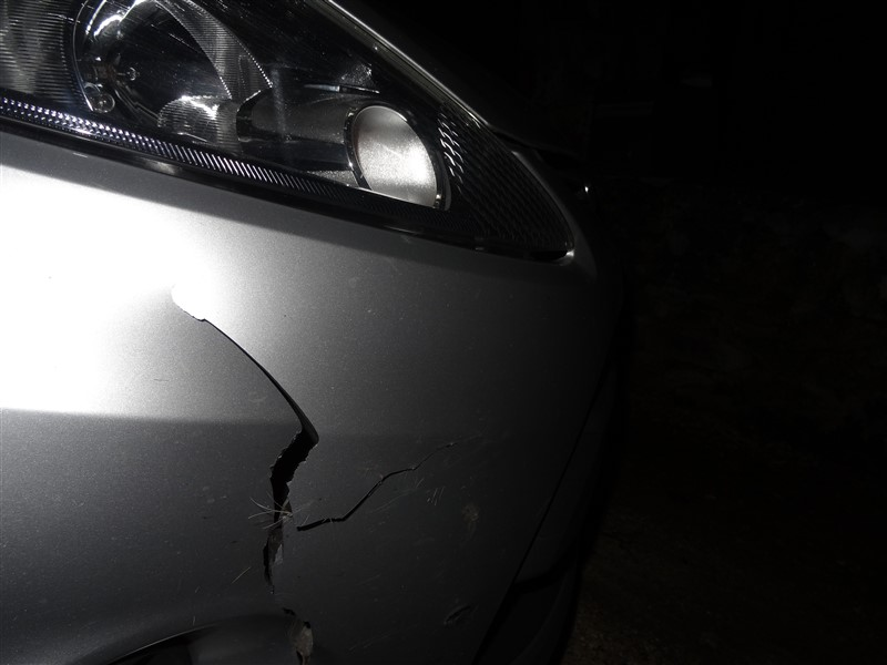 damage to car caused by deer
